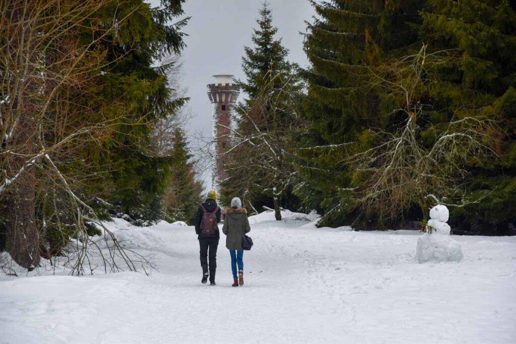 Winterwandern zum Hohlohturm auf dem Kaltenbronn