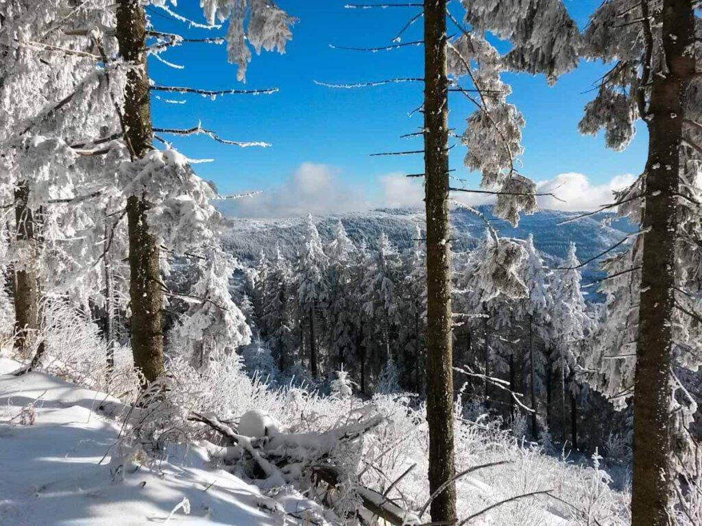 Wintermärchen Schwarzwald-Hochstraße