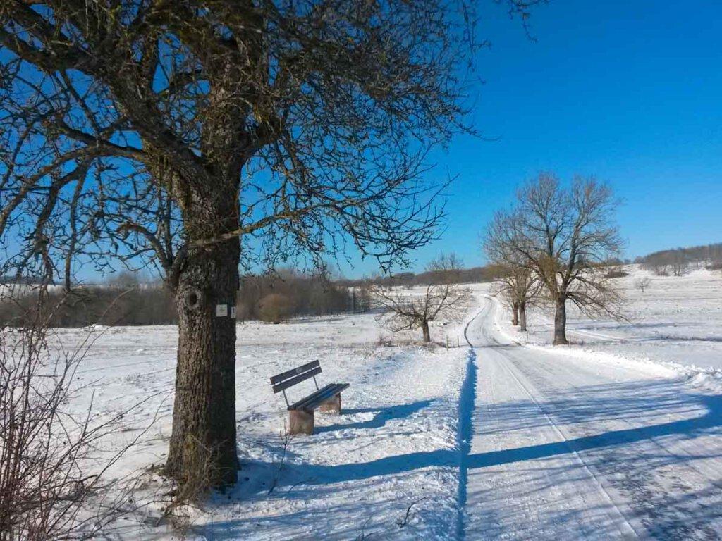 Zauberhafte Winterwanderwege auf der Schwäbischen Alb