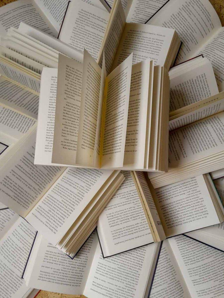 Die Bücherchallenge unserer Teenager