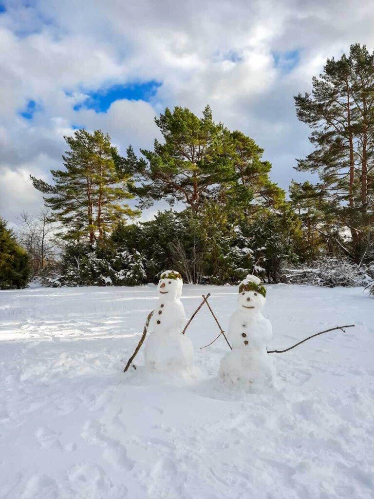Ist das Schneemannpaar nicht cool?