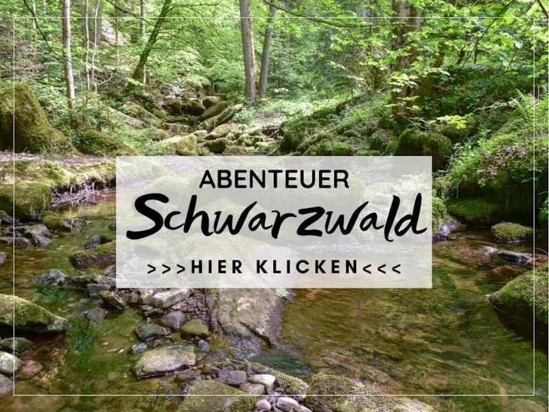 Die schönsten Ausflugsziele und Wanderungen im Schwarzwald