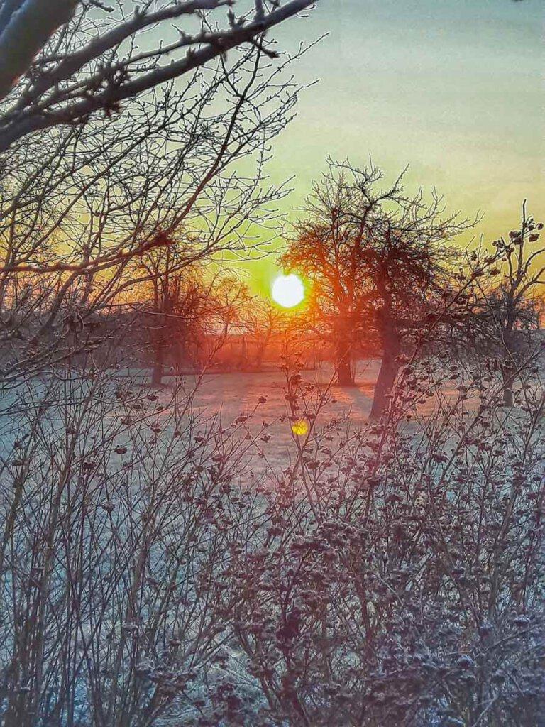 Magische Sonnenaufgänge im Winter