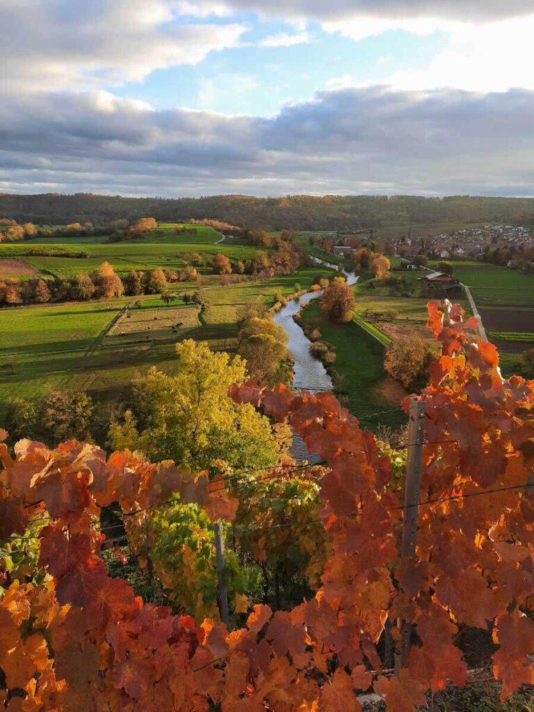 Die Enzschleife Mühlhausen im farbenprächtigen Herbstkleid