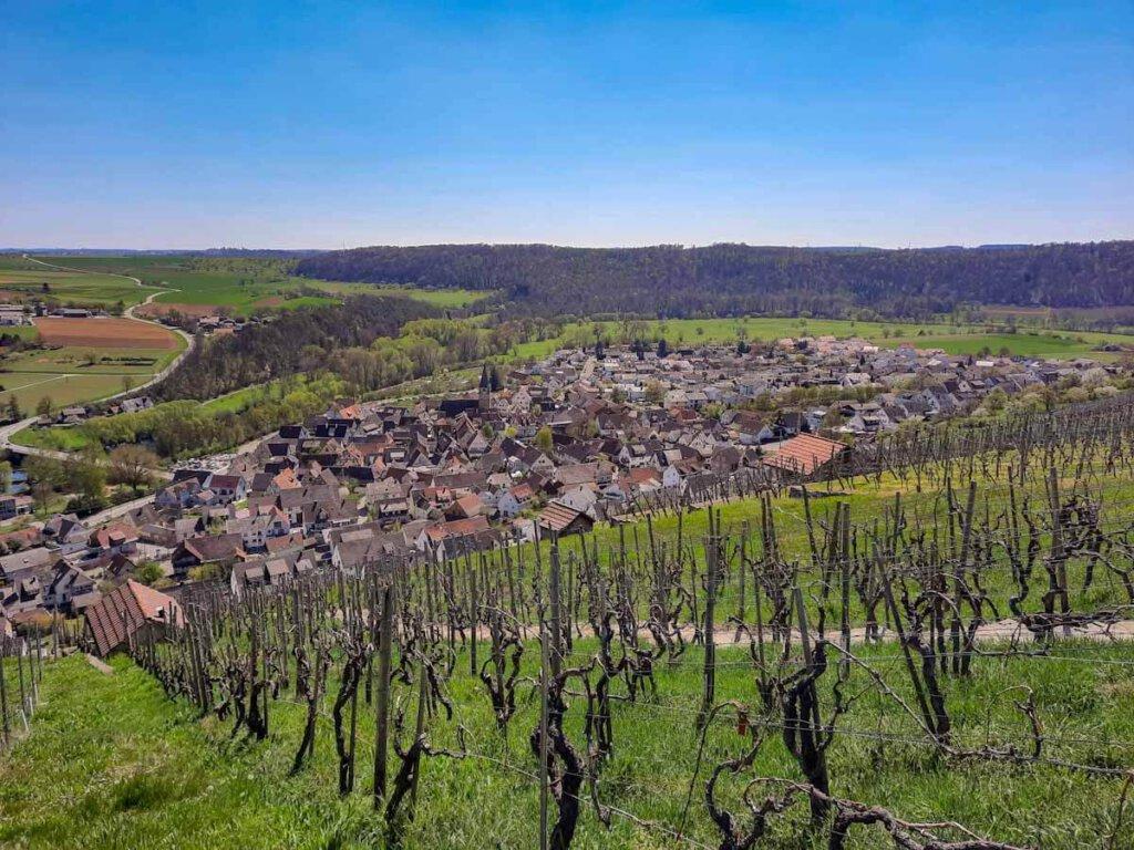 Blick von der Weinkanzel über die Roßwager Halde und den Weinort