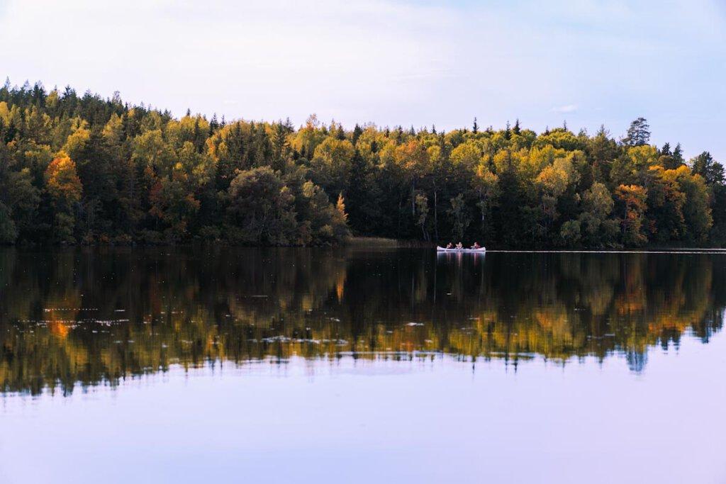 Paradies für Outdoorfans: Das Naturschutzgebiet Fjällnora in Schweden