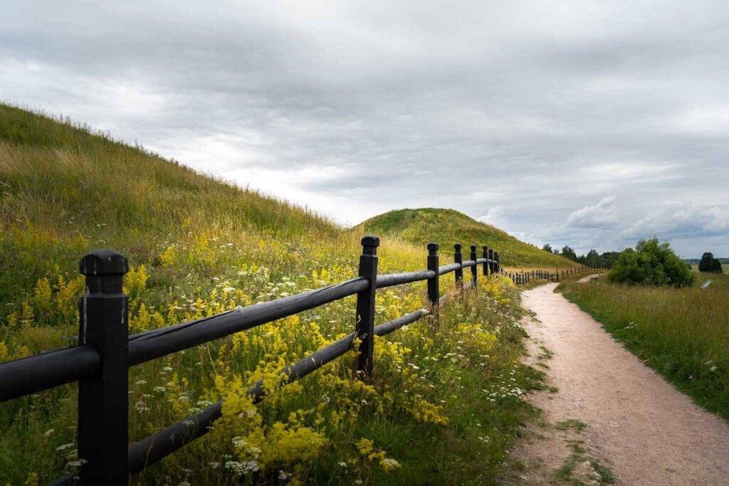 Wandern auf den Linnaeus Trails rund um Uppsala
