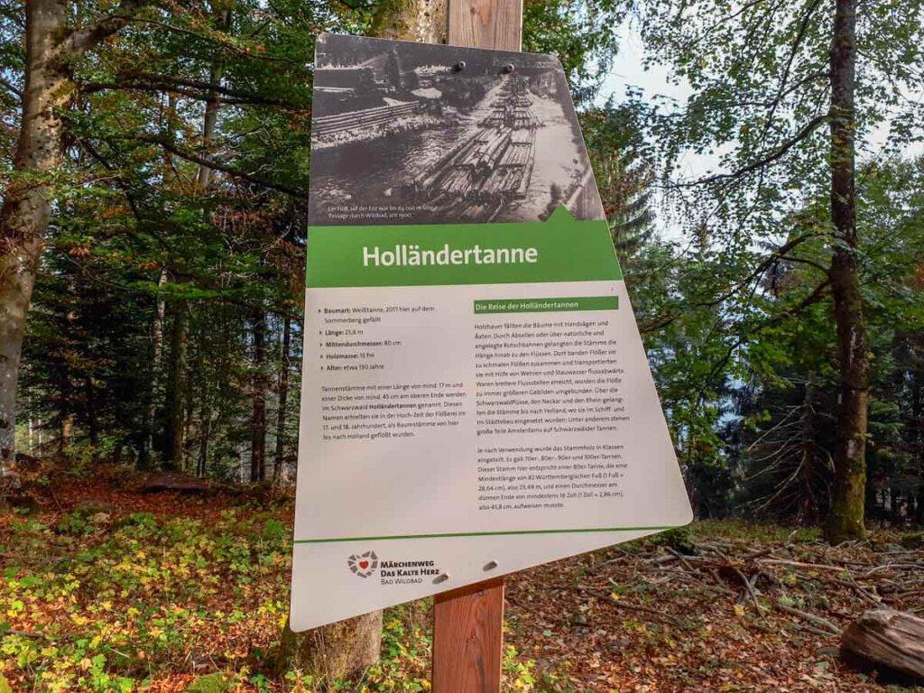 Wandern auf dem Märchenweg am Sommerberg Bad Wildbad