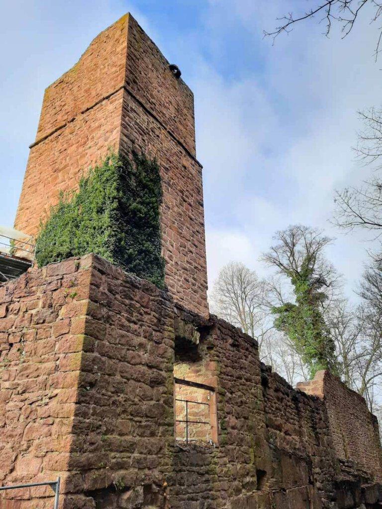 Bezaubernde Nordschwarzwald Wandertour zur Ruine Liebeneck