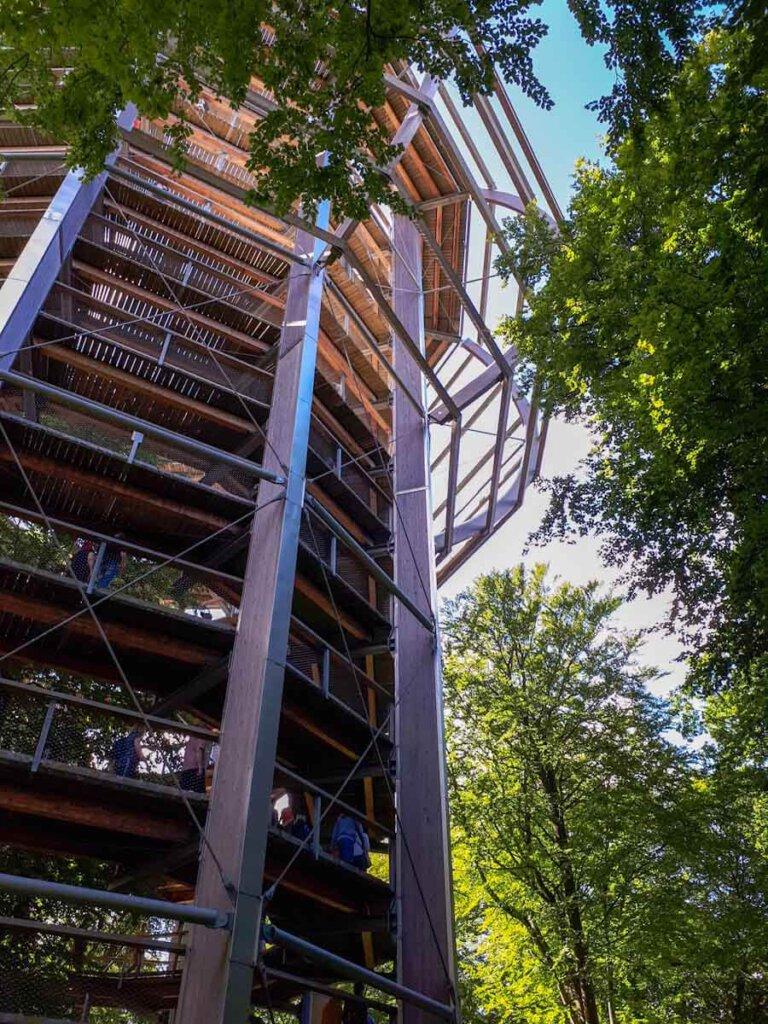 Der atemberaubende Adlerhorst, der Aussichtsturm des Baumwipfelpfads Rügen, ragt vor uns auf