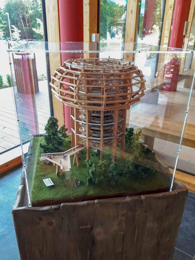 Die spektakuläre Architektur des Baumwipfelpfads Prora im Modell