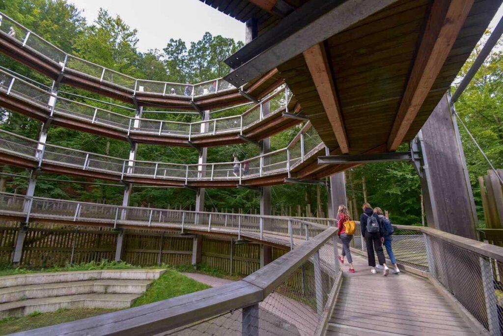 Der Rügener Baumwipfelpfad ist barrierefrei begehbar