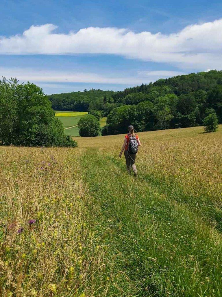 Schwäbische Alb Wandern: Idyllischer Wiesenweg zurück zum Schloss Lichtenstein