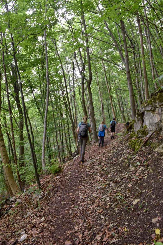 Wandern Schwäbische Alb: Steiler Aufstieg auf die Albhochfläche