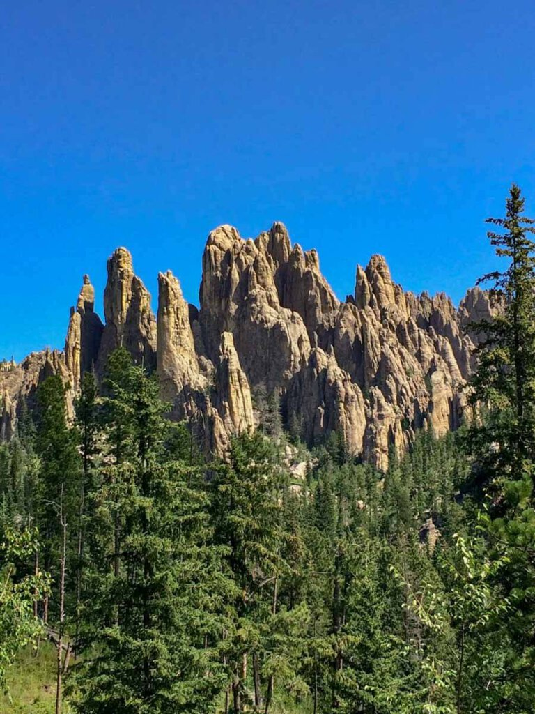 Die bizarren Felsnadeln entlang des Needles Highway im Custer State Park