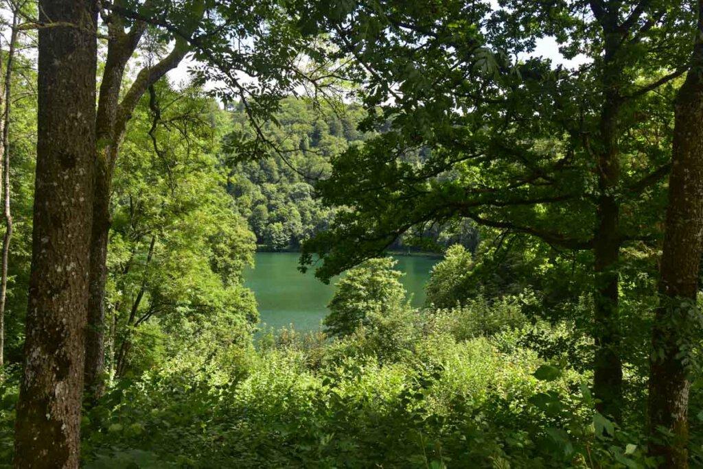 Die Dauner Maare in der Eifel: Das türkisfarbene Gemündener Maar